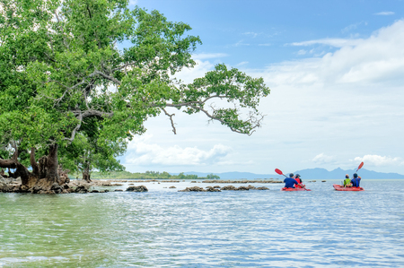 Kayaks. People kayaking in the sea.