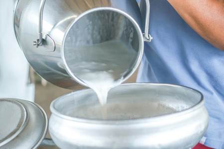 Pour raw milk into a bucket 스톡 콘텐츠