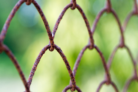 metal mesh: Old metal mesh wire fence with blur background. Stock Photo