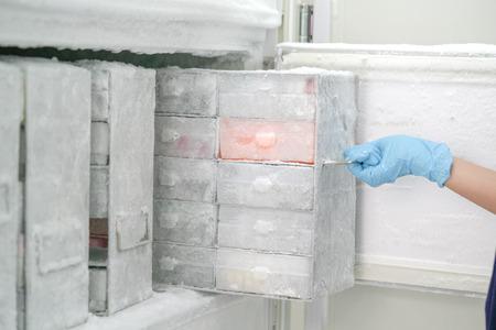 Houd geïsoleerde pathogenen op ultra lage temperatuur in de laboratoriumvriezer. Stockfoto - 92444630
