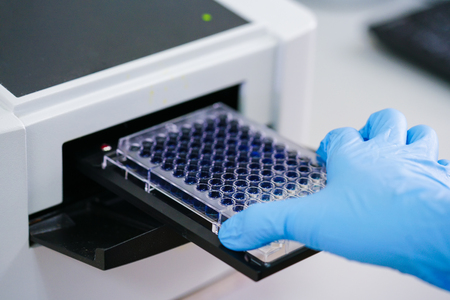 ELISA plate to measure OD with microplate reader. Microtiter plate (96 well) reader for biochemistry analysis. Stock Photo