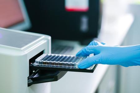 マイクロプレートリーダーでODを測定するELISAプレート。生化学分析のためのマイクロティタープレート(96ウェル)リーダー。 写真素材