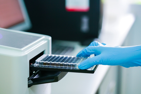 ELISA plate to measure OD with microplate reader. Microtiter plate (96 well) reader for biochemistry analysis. Stockfoto
