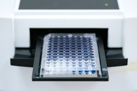 ELISA plate to measure OD with microplate reader. Microtiter plate (96 well) reader for biochemistry analysis. Archivio Fotografico