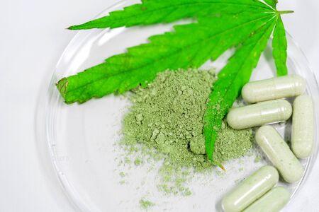 Cannabis(Drugs) marijuana leaf with capsule pill for healthy in medicine. Alternative medicine, Medical cannabis. Stok Fotoğraf