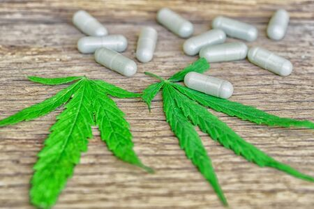 Cannabis(Drugs) marijuana leaf with capsule pill for healthy in medicine. Alternative medicine, Medical cannabis. Banque d'images