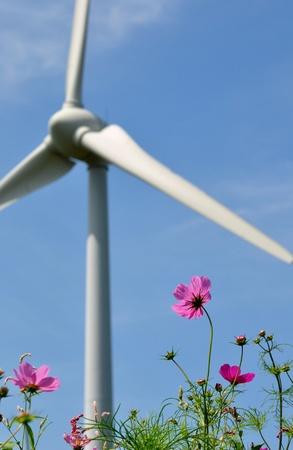wind power generation photo