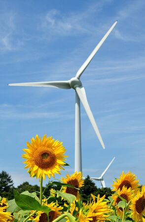 plateau of flowers: sunflowers and wind power plants Stock Photo
