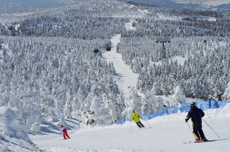 スキー場 写真素材