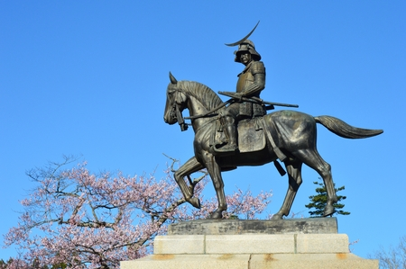 warlords: Masamune and cherry blossoms Stock Photo