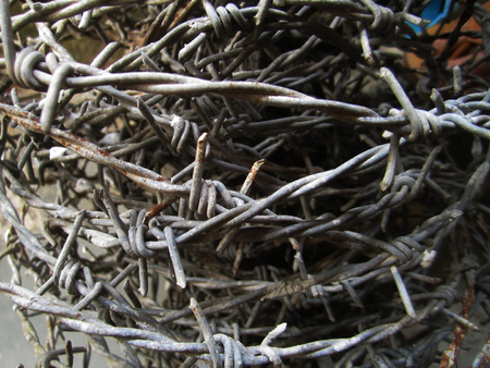 deterrent: old barbed wire
