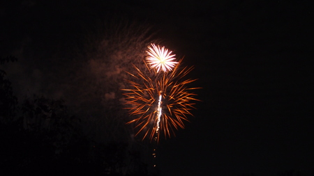 bright colorful firework display for celebration