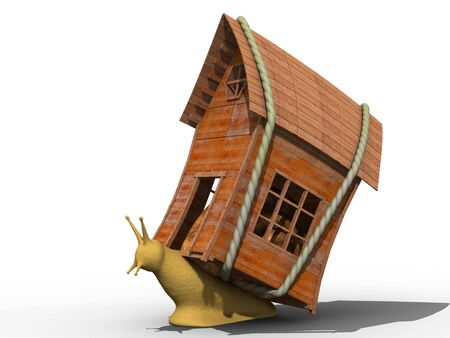 Snail with small wooden house. Isolated.