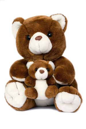 plush toy: teddy bear Stock Photo