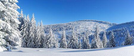 winter panorama