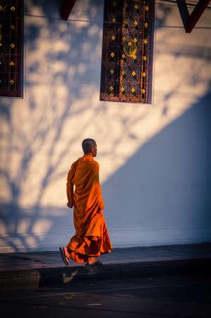 moine: Monk Walking