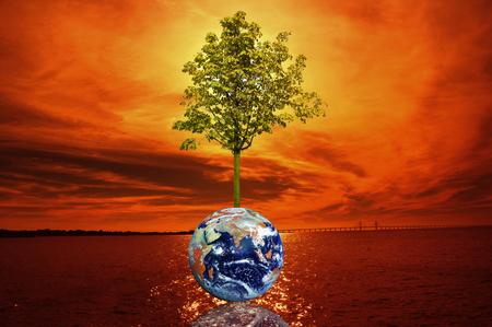 glowing earth: holding a glowing earth NASA globe and tree Stock Photo