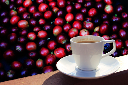 Coffee cup and saucer on a wooden table. Fresh coffee beans background. Stock Photo