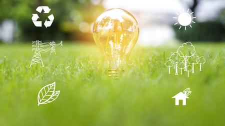 żarówka w zielonej trawie, Save earth concept Zdjęcie Seryjne