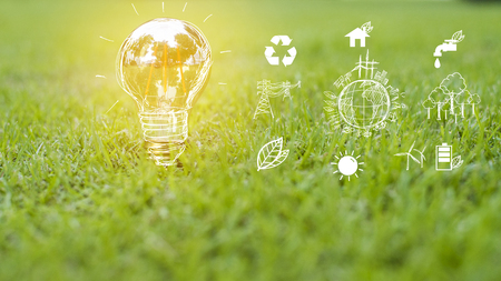 light bulb in green grass, Save earth concept Фото со стока - 83424454