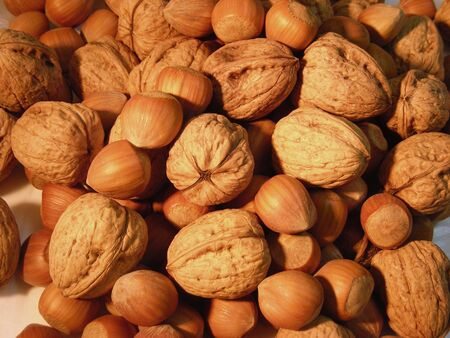 Group of walnuts and hazelnuts top view
