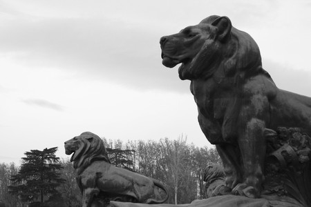 View two lions protecting the Spanish King Alfonso XII Monument at the Retiro Gardens in Madrid.
