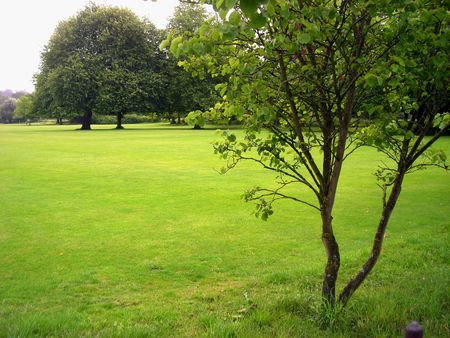 winchester: View of a beautiful meadow at Winchester, England. Stock Photo