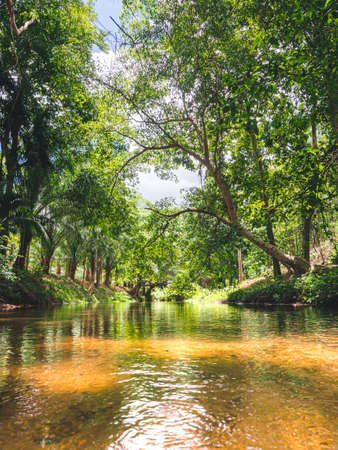 Beautiful landscape of mountain stream in the forest at Suan Phueng, Ratchaburi, Thailand.