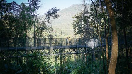 sirikit: A new attraction in Chiang Mai. Canopy walkway, Queensrikit garden.