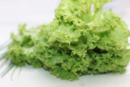 Lettuce green Stock Photo - 9596977