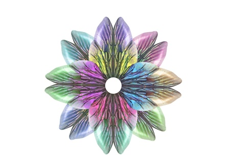 Insect wings create a multi-colored flower Stock Photo - 9724567