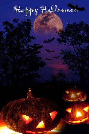 Halloween night background and pumpkins