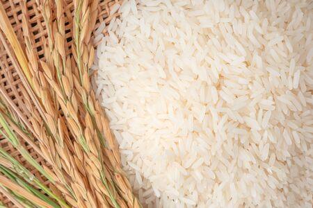Long grain of rice and rice,White rice (Jasmine rice) thailand