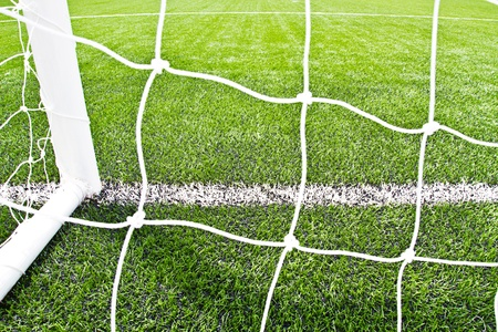 football pitch: football grass background