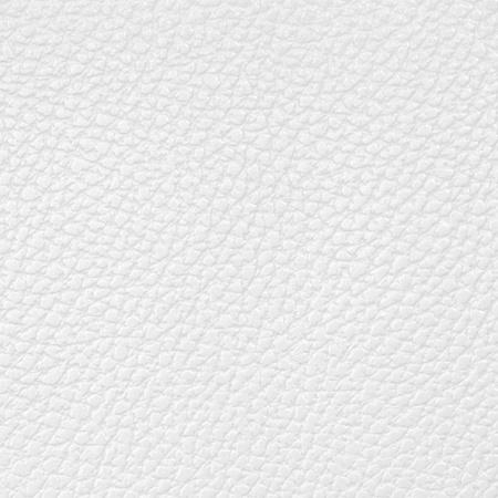 peau cuir: fond de cuir