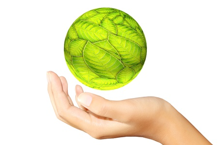 earth hands: green leaves ball in hands