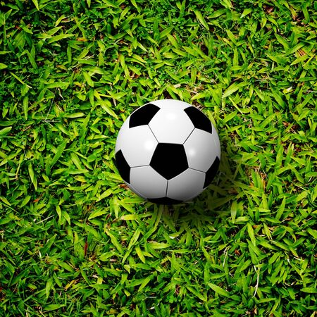 soccer ball on soccer field photo