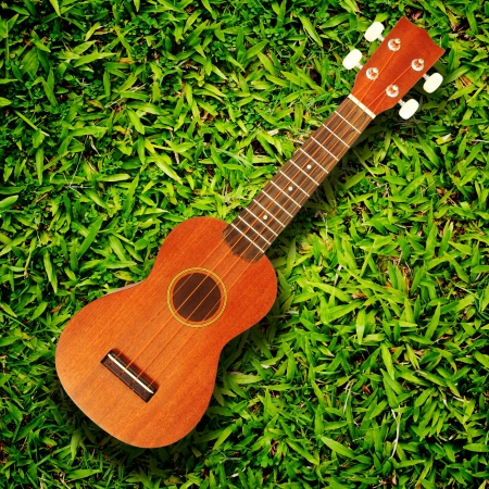ukulele on green grass texture photo