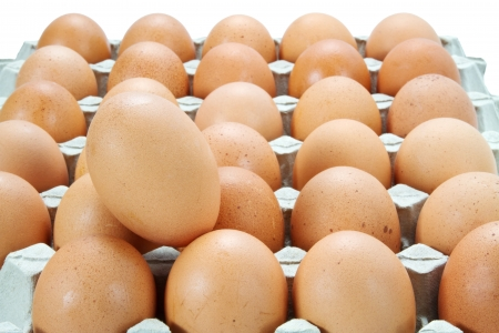 eggs in the Carton Stock Photo