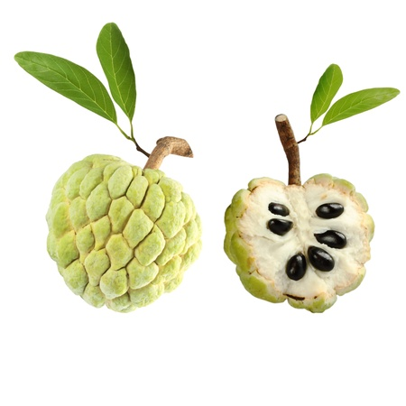 custard apple fruit: Custard apple on white background