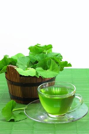 Tea of the Pennywort leaves