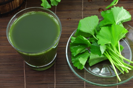 Pennywort juice and fresh leaves  photo