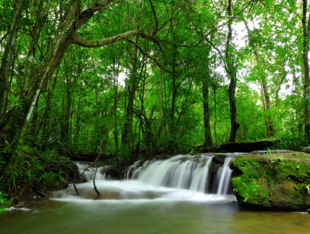 Part of Soi Sawan waterfall Thailand Stock Photo - 15119394