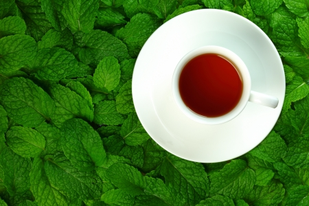 Cup of hot tea on a background of mint leaves.