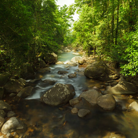 namtok: Part of a Namtok Phlio in national park, Chanthaburi Province, Thailand.