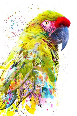 Paintography. Double exposure close up portrait of a stunning tropical parrot blending into vibrant painting on white background