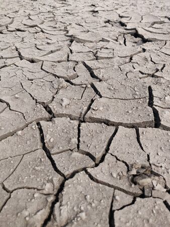 Area of Dried Land Suffering from Drought, ground cracks.