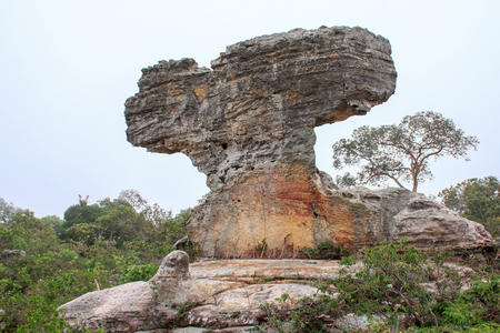 Beautiful natural sculpture rock.