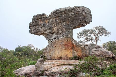 denver buildings: Beautiful natural sculpture rock.