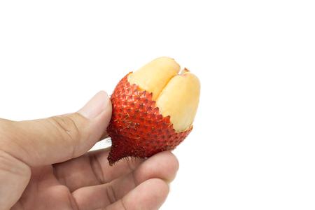 salak: Salak, tropical sweet Thai fruit in hand